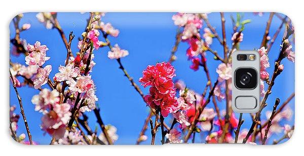 Cafe Galaxy Case - Field Of Flowers In Blue Sky by Az Jackson