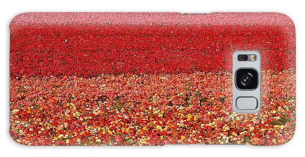 Scenery Galaxy Case - Field Of Ranunculus Flowers At Carlsbad by Joseph Sohm