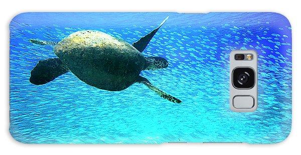 Turtle Galaxy Case - Fish Swoop by Sean Davey