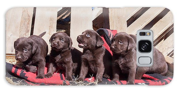 Chocolate Lab Galaxy Case - Five Chocolate Labrador Retriever by Zandria Muench Beraldo