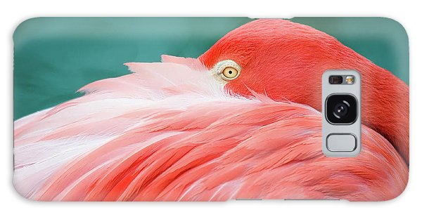Flamingo At Rest Galaxy Case