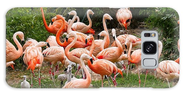 Flamingos Outdoors Galaxy Case