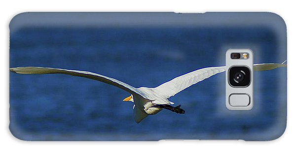 Flight Of The Egret Galaxy Case