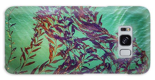 Floatin Kelp I Color Galaxy Case