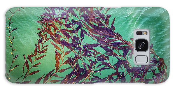 Galaxy Case featuring the photograph Floatin Kelp I Color by David Gordon