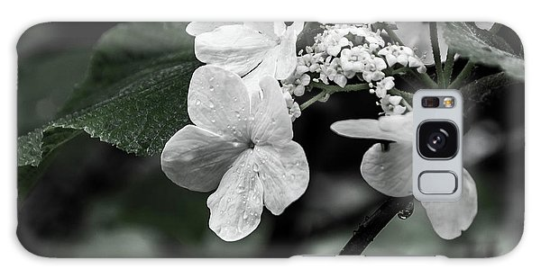 Flower And Rain Drops  8645 Galaxy Case