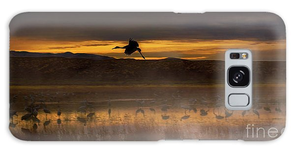 Flying Over Crane Pond Galaxy Case
