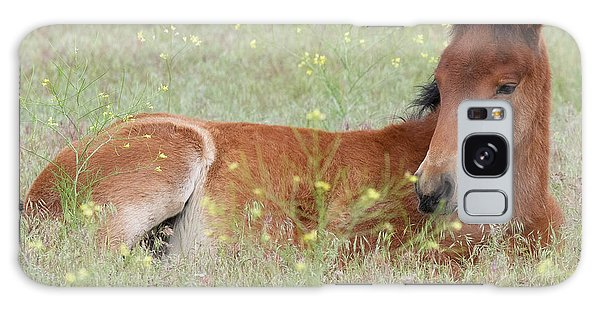 Foal In The Flowers Galaxy Case