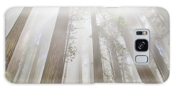 Fog In The Redwoods Galaxy Case