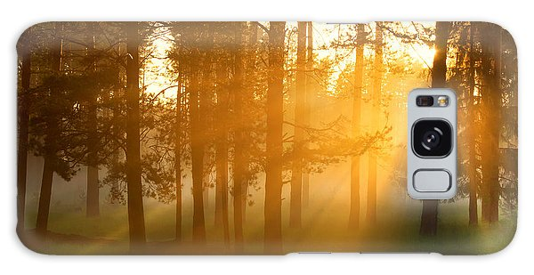 Pine Branch Galaxy Case - Foggy Morning In A Forest by Belkos
