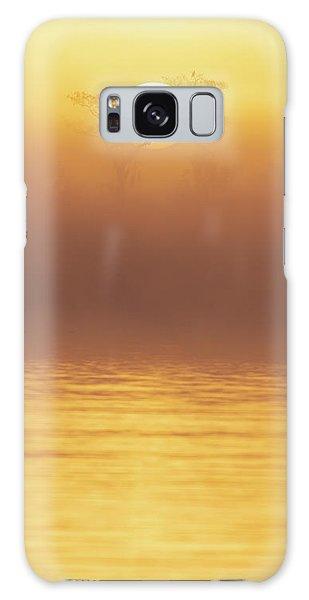 Foggy Wetlands Sunrise Galaxy Case