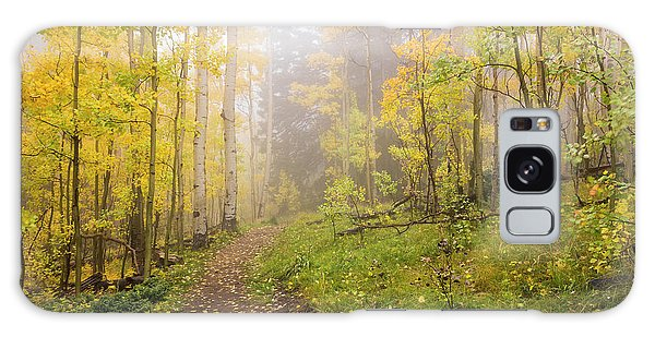 White Mountain National Forest Galaxy Case - Foggy Winsor Trail Aspens In Autumn 2 - Santa Fe National Forest New Mexico by Brian Harig