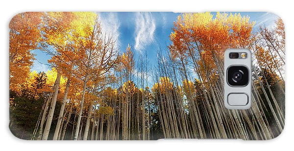 Galaxy Case featuring the photograph Follow The Yellow Leaf Road by Rick Furmanek