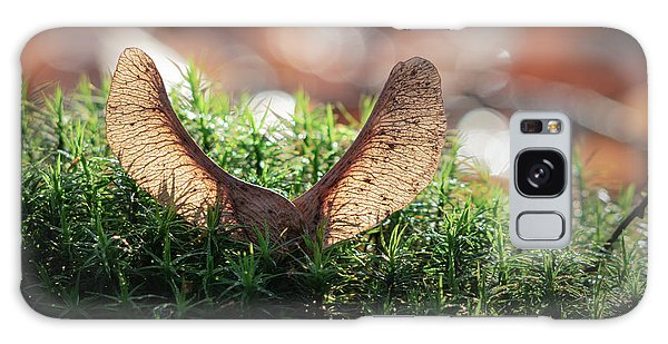 Forest Angel Galaxy Case