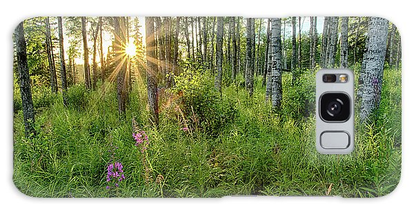 Galaxy Case featuring the photograph Forest Growth Alaska by Nathan Bush