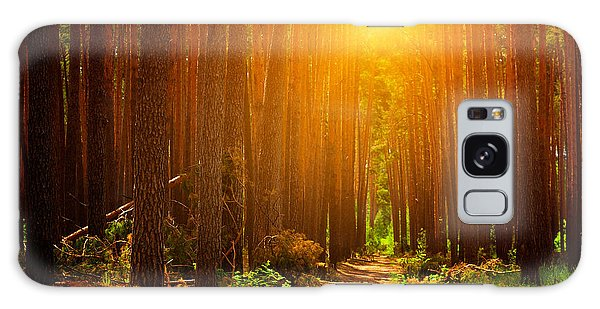 Pine Branch Galaxy Case - Forest Landscape by Sunny Forest