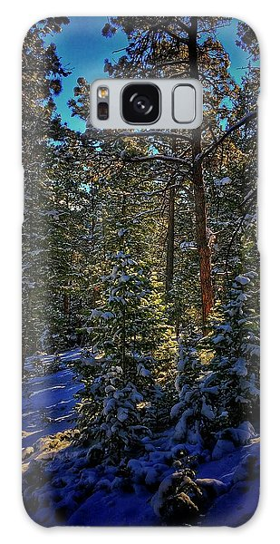 Galaxy Case featuring the photograph Forest Shadows by Dan Miller
