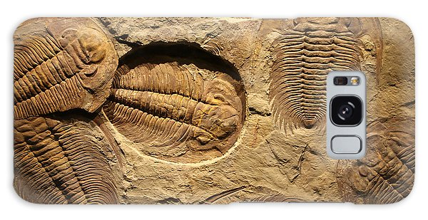 Horizontal Galaxy Case - Fossil Trilobite Imprint In The Sediment by Merlin74
