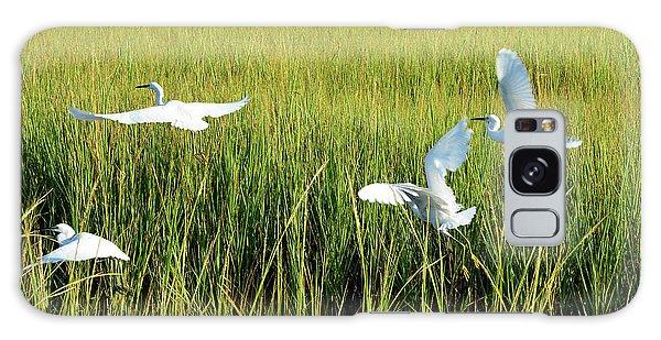 Four Snowy Egrets In Flight Galaxy Case