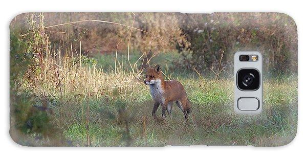 Fox On Prowl Galaxy Case