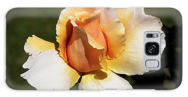 Fragrant Rose Galaxy Case