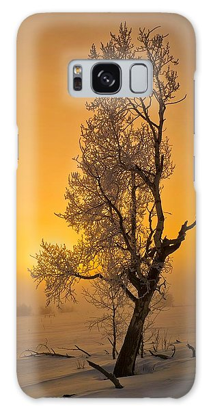 Frosted Tree Galaxy Case