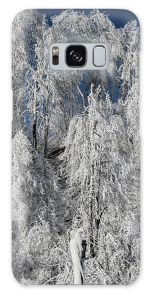 Frosted Trees Galaxy Case