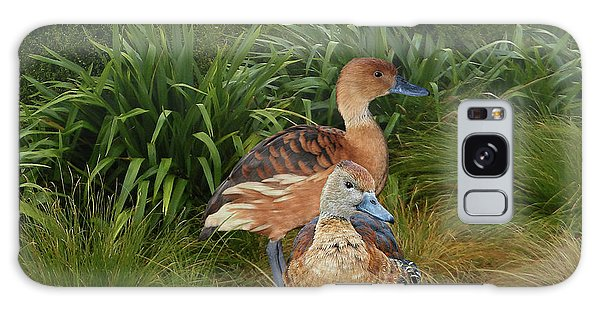 Fulvous Whistling Ducks  Galaxy Case