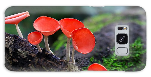 Tasty Galaxy Case - Fungi Cup Red Mushroom Champagne Cup by Sanit Fuangnakhon