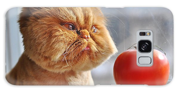 Comical Galaxy Case - Funny Cat And Red Tomato by Zanna Pesnina