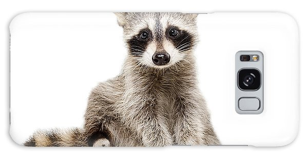 Comical Galaxy Case - Funny Raccoon Sitting Isolated On White by Sonsedska Yuliia