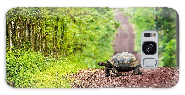 Woods Galaxy Case - Galapagos Giant Tortoise Crossing by Nwdph