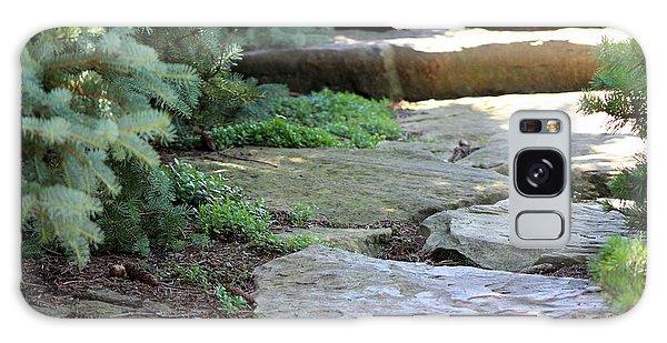 Garden Landscape - Stone Stairs Galaxy Case