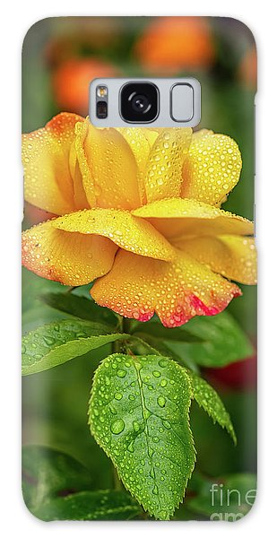 Galaxy Case - Garden Rose by Adrian Evans