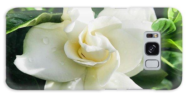 Gardenia Galaxy Case - Gardenia Closeup Square by Carol Groenen