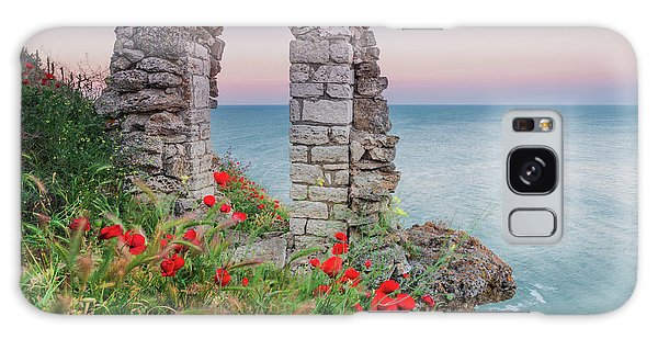 Gate In The Poppies Galaxy Case