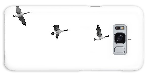Canada Goose Galaxy Case - Geese In Flight by Jim Hughes