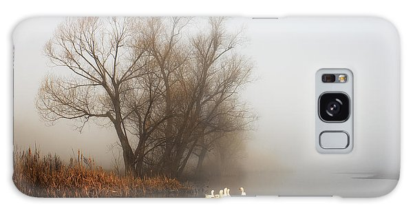 Goose Galaxy Case - Geese In Fog. Flock Of Birds Swims Near by Arvitalyaa