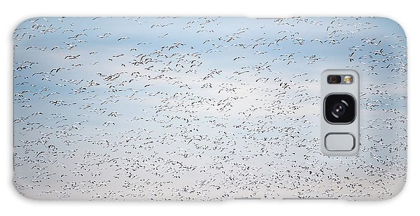 Geese In The Flyway Galaxy Case