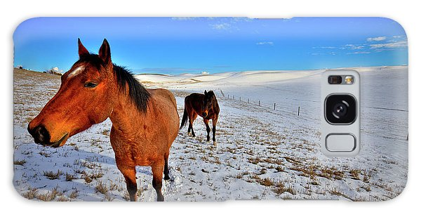 Galaxy Case featuring the photograph Geldings In The Snow by David Patterson