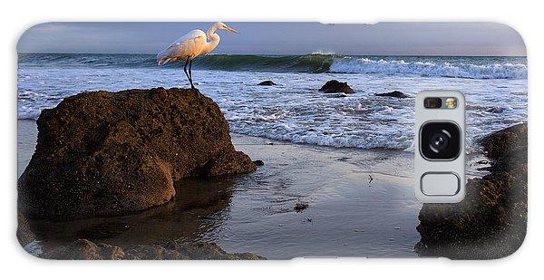 Giant Egret Galaxy Case