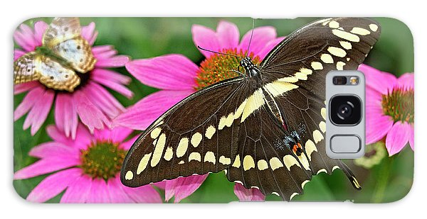 Giant Swallowtail Papilo Cresphontes Galaxy Case