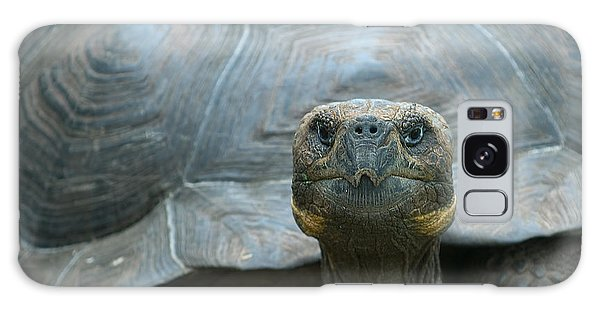 Turtle Galaxy Case - Giant Turtle, Galapagos Islands, Ecuador by Javarman
