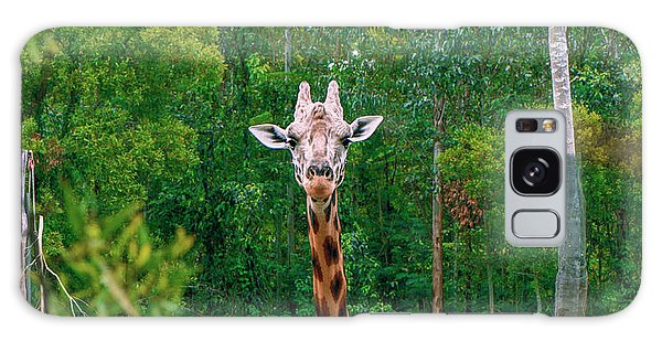Giraffe Looking For Food During The Daytime. Galaxy Case