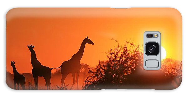 Angle Galaxy Case - Giraffe Silhouette - African Wildlife by Stacey Ann Alberts