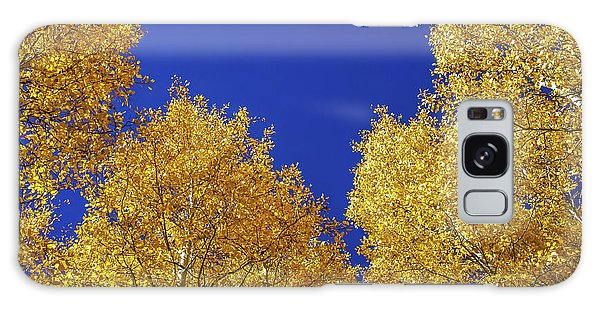 Golden Aspens And Blue Skies Galaxy Case