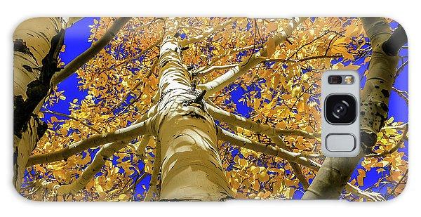 Golden Aspens In Grand Canyon Galaxy Case