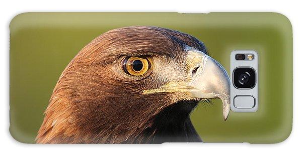 Golden Eagle 5151801 Galaxy Case