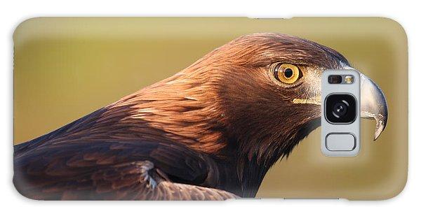Golden Eagle 5151806 Galaxy Case
