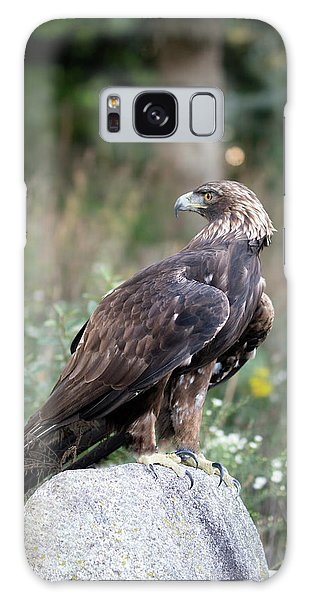 Golden Eagle On Rock 92515 Galaxy Case